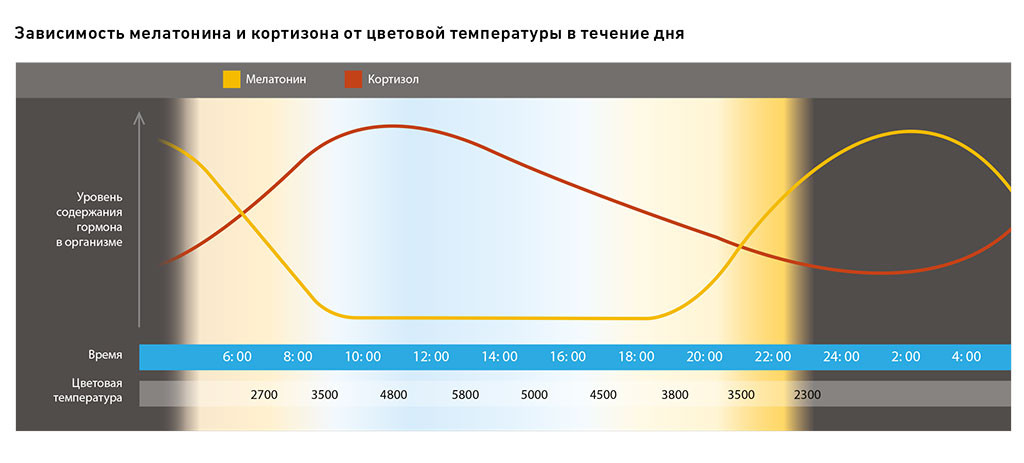 Зависимость мелатонина и кортизона от цветовой температуры в течение дня