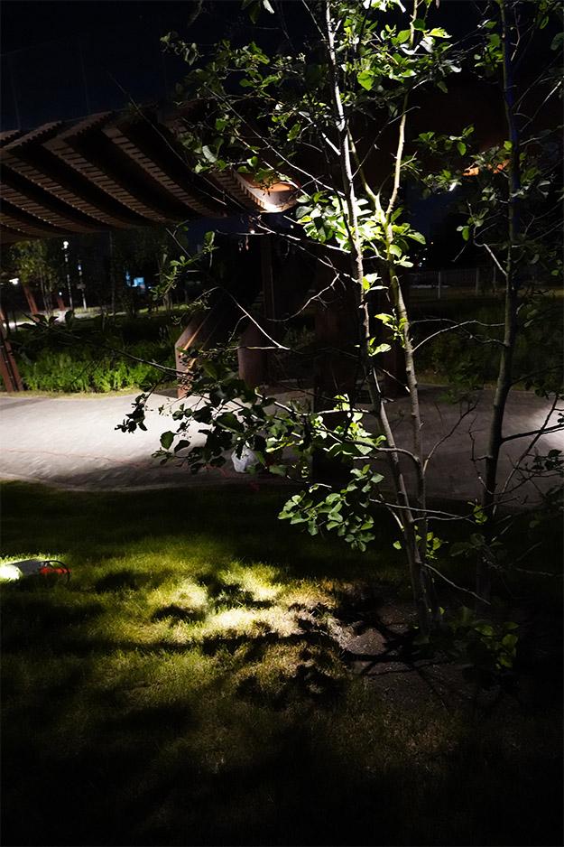 Натурное светомоделирование в парке «Тюфелева роща»